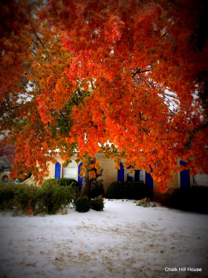chalk hill house fall leaves in ice storm cobalt blue shutters